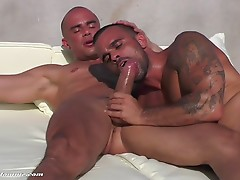 Damien Crosse gulps down all of Diego Summers`s extra thick cock before hungrily taking it raw in just about every position served aggressively hard by Summers until he finally breeds Crosse.