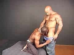 Adam Mansfield and Calvin Hudson are both ripped and toned, and supremely studly. In this condomless encounter, Calvin bottoms out for Adam, who has no problem dominating the other man`s holes. It`s a black-on-black bareback match that`s not to be missed.